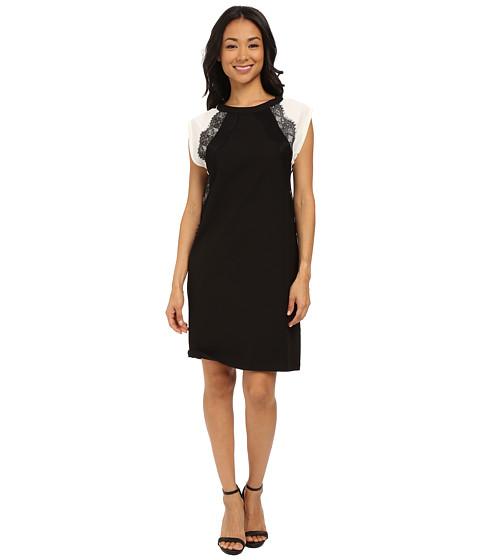 Imbracaminte Femei KUT from the Kloth Shift Dress w Contrast Shoulders Black