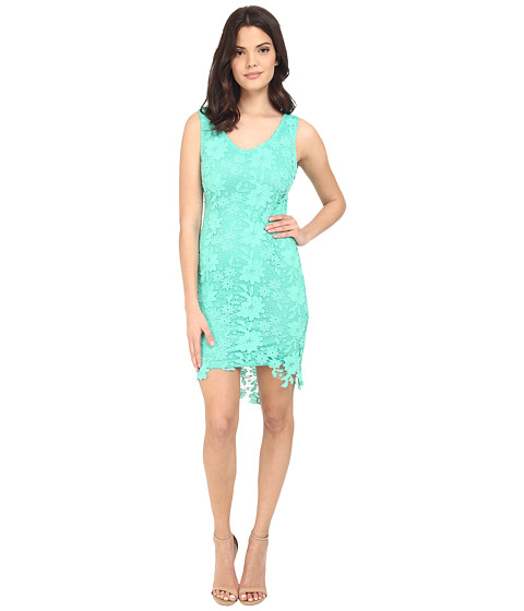 Imbracaminte Femei Brigitte Bailey Poppy Lace Midi Dress Emerald Green