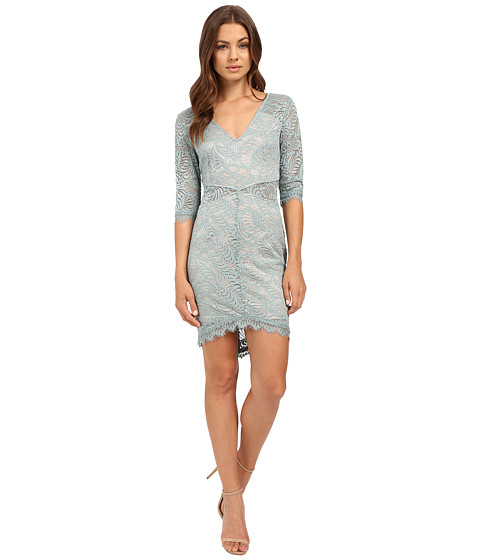Imbracaminte Femei Brigitte Bailey Rashida Lace Bodycon Dress Grey