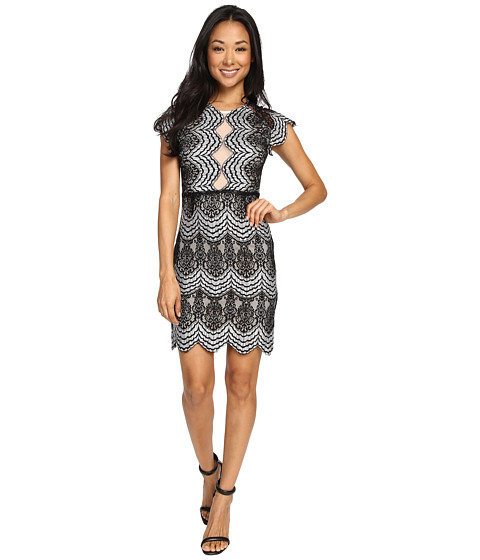 Imbracaminte Femei Brigitte Bailey Mica Short Sleeve Lace Dress BlackIvory