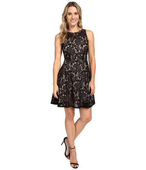 Imbracaminte Femei Karen Kane Fit and Flare Lace Dress BlackNude