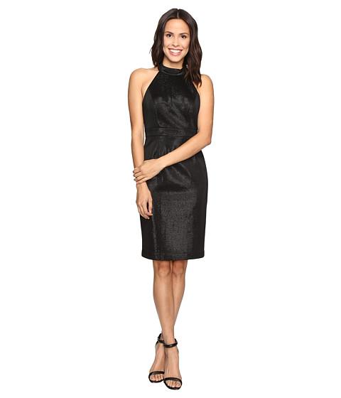Imbracaminte Femei Adrianna Papell Glam Stretch Halter Dress Black