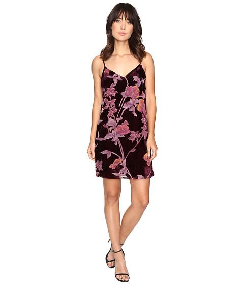 Imbracaminte Femei Brigitte Bailey Kleo Spaghetti Strap Floral Velvet Dress Wine