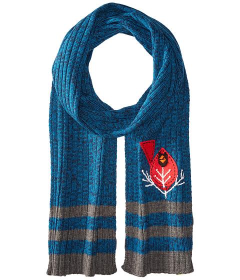 Accesorii Femei Smartwool Charley Harper Cardinal Scarf Glacial Blue