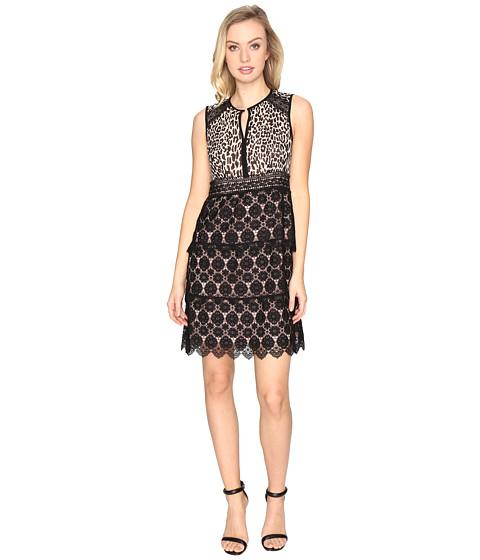 Imbracaminte Femei Nanette Lepore Amaretto Shift Dress Leopard