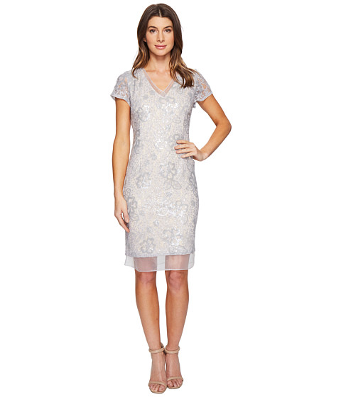 Imbracaminte Femei Adrianna Papell Sequin Lace Organza Sheath Dress SilverNude