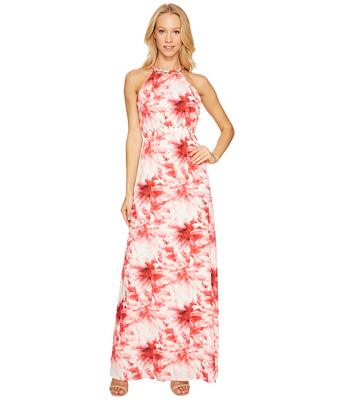 Imbracaminte Femei Tahari by ASL Maxi Floral Print Dress RosyDesert Coral