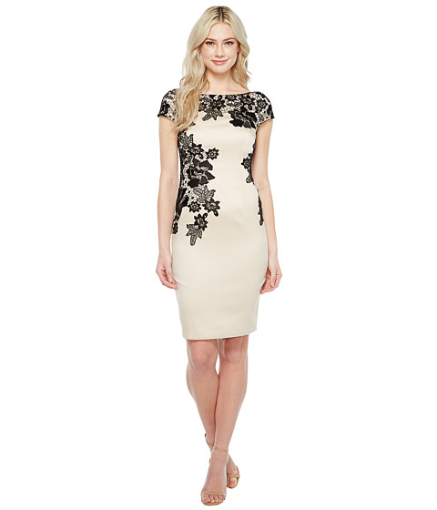 Imbracaminte Femei Adrianna Papell Appliqued Lace Sheath Dress Champagne