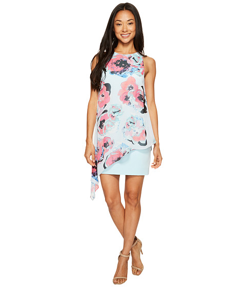 Imbracaminte Femei Tahari by ASL Petite Floral Chiffon Overlay Dress SkyFuchsiaBlack