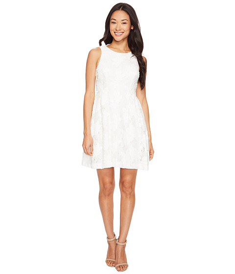 Imbracaminte Femei Tahari by ASL Petite Leather and Lace Textured A-Line Dress White
