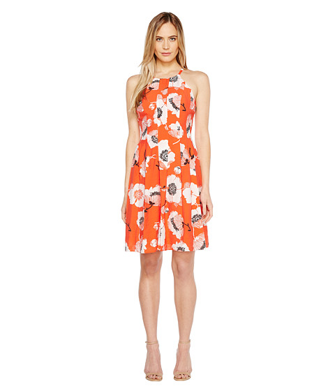 Imbracaminte Femei Adrianna Papell Grand Vintage Etching Print Seamed Fit and Flare Seamed Halter Dress Red Multi