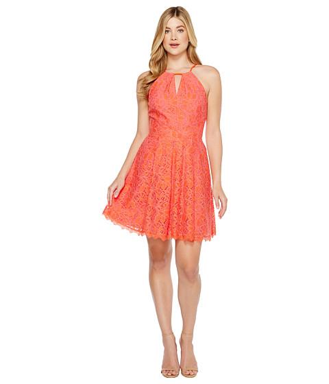 Imbracaminte Femei Adelyn Rae Renee Lace Fit and Flare Dress Hot PinkOrange