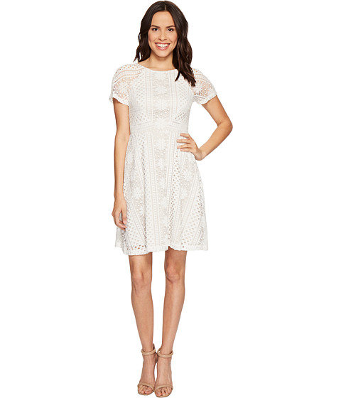 Imbracaminte Femei Adrianna Papell Verona Striped Lace Spliced Fit and Flare Dress IvoryChamois