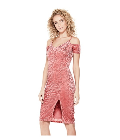 Imbracaminte Femei GUESS Zora Velvet Burnout Floral-Print Dress withered rose