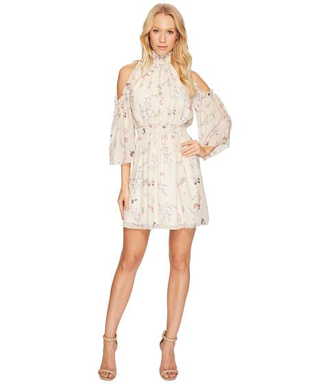 Imbracaminte Femei Rachel Zoe Meade Dress Garden Ivory