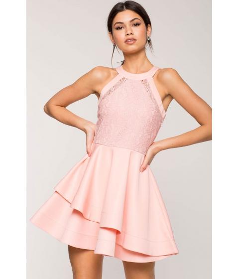 Imbracaminte Femei CheapChic Lace Ultra Flare Dress Blush