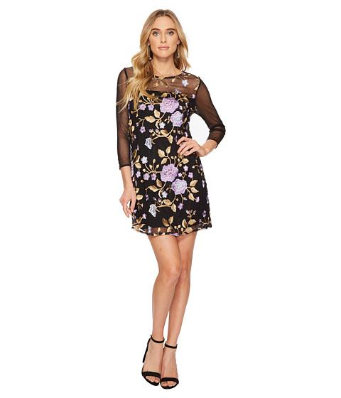Imbracaminte Femei BB Dakota Jaelyn Embroidered Mesh Dress Black